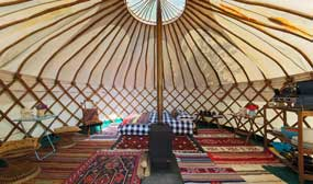 yurt-widgetpic